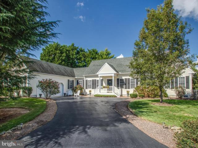 107 Deerfield Drive, LEWES, DE 19958 (#1009950186) :: RE/MAX Coast and Country