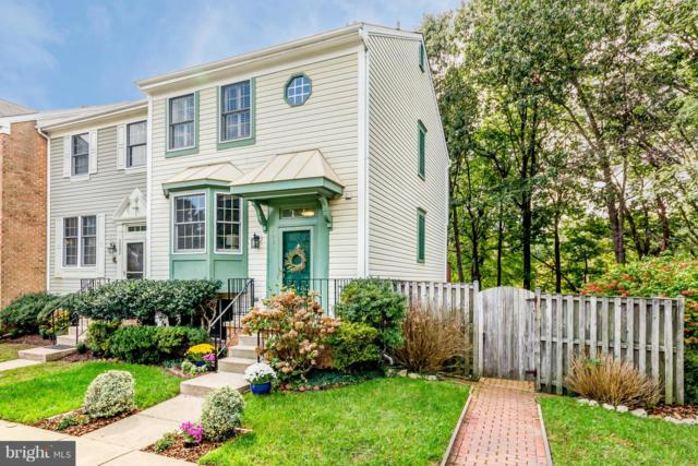 1230 Swanhill Court, CHESTNUT HILL COVE, MD 21226 (#1009950528) :: Great Falls Great Homes