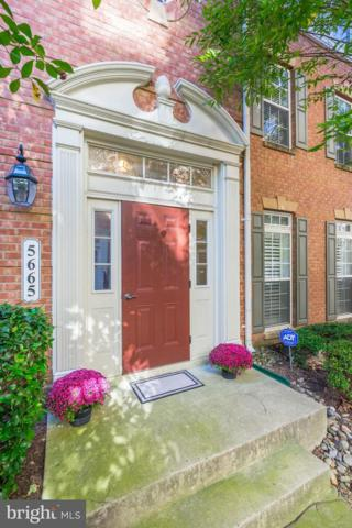 5665 Harrington Falls Lane C, ALEXANDRIA, VA 22312 (#1009950894) :: Bob Lucido Team of Keller Williams Integrity
