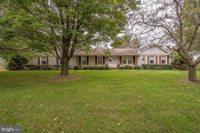 300 Crane Road, DILLSBURG, PA 17019 (#1009950926) :: Teampete Realty Services, Inc