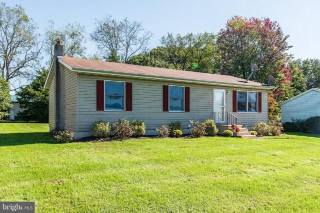 26 Riverview Court, ELKTON, MD 21921 (#1009953842) :: AJ Team Realty