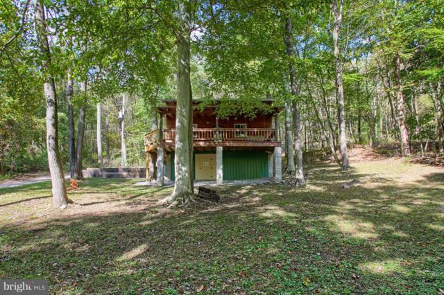 22698 Yocum Drive, DOYLESBURG, PA 17219 (#1009953918) :: Great Falls Great Homes