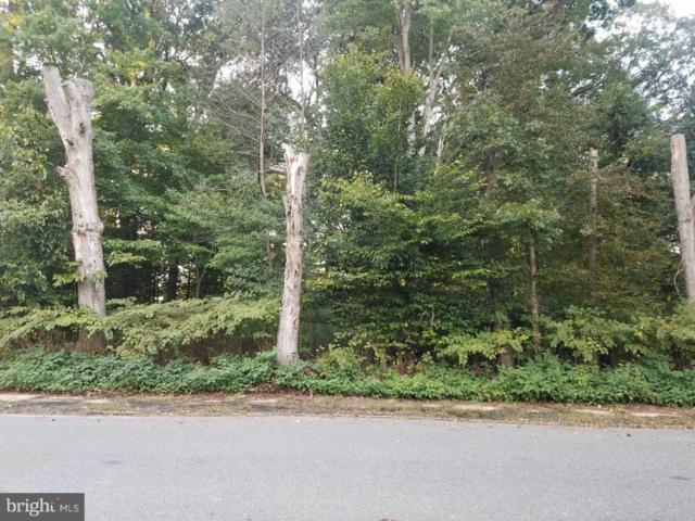 Lot 024 Fern Avenue, DEPTFORD, NJ 08096 (#1009954154) :: The John Wuertz Team