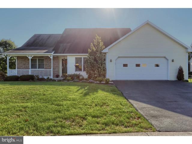 301 Kappa Court, WERNERSVILLE, PA 19565 (#1009954636) :: Colgan Real Estate