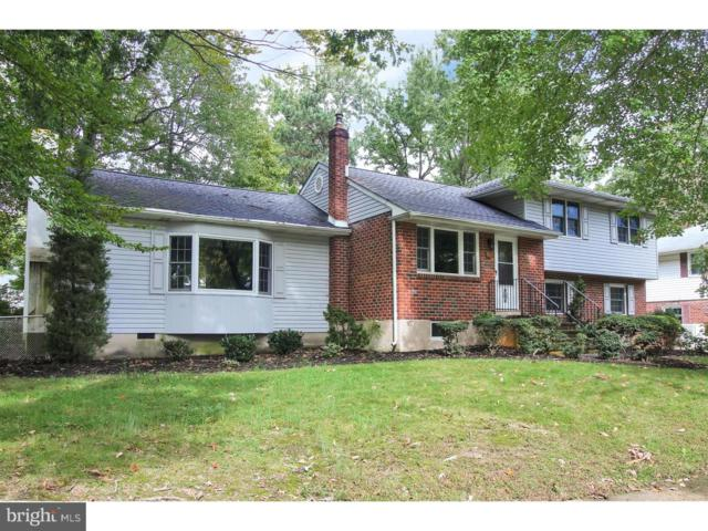 421 Roseanna Avenue, WILMINGTON, DE 19803 (#1009955528) :: RE/MAX Coast and Country