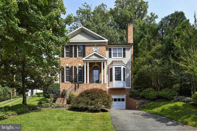 6025 Grove Drive, ALEXANDRIA, VA 22307 (#1009956364) :: The Maryland Group of Long & Foster