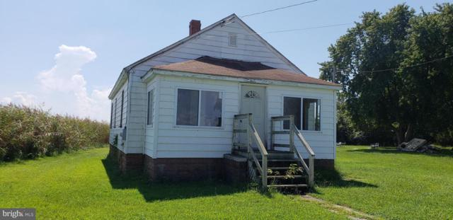 23815 Deal Island Road, DEAL ISLAND, MD 21821 (#1009956370) :: RE/MAX Coast and Country