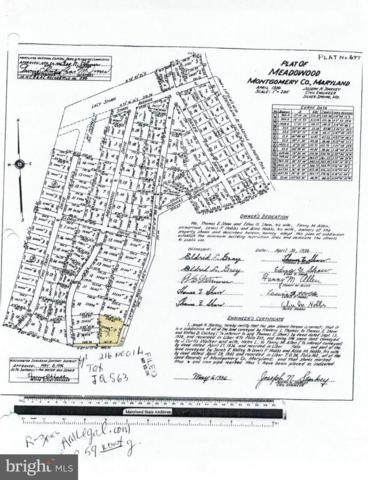 12503 Meadowood Drive, SILVER SPRING, MD 20904 (#1009956376) :: Colgan Real Estate