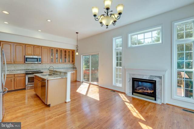 13633 Cedar Run Lane, HERNDON, VA 20171 (#1009956720) :: Colgan Real Estate