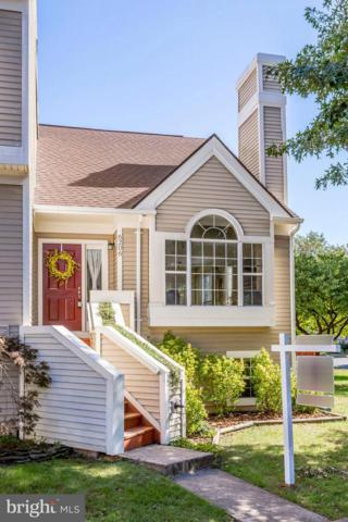 6206 Stonepath Circle, CENTREVILLE, VA 20120 (#1009957160) :: The Sky Group