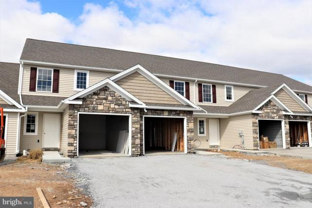 235 Lakeside Crossing, MOUNT JOY, PA 17552 (#1009962016) :: Younger Realty Group