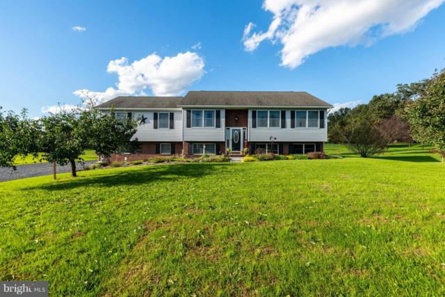 370 Harney Road, LITTLESTOWN, PA 17340 (#1009962622) :: The Joy Daniels Real Estate Group