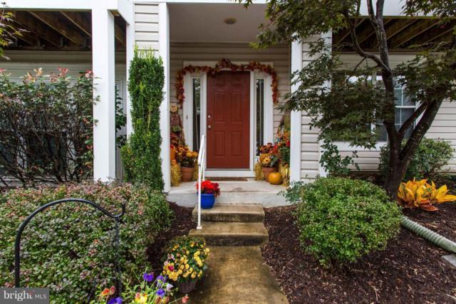 5131 Castle Harbor Way #82, CENTREVILLE, VA 20120 (#1009962624) :: Jennifer Mack Properties