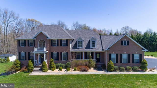6722 Caddis Place, HUGHESVILLE, MD 20637 (#1009963496) :: The Gus Anthony Team