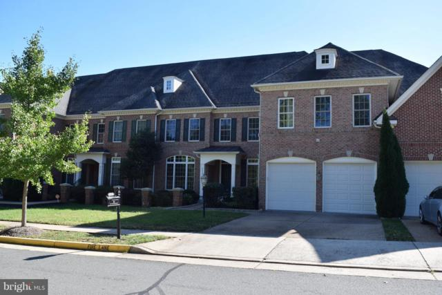 43595 Carradoc Farm Terrace, LEESBURG, VA 20176 (#1009963656) :: The Putnam Group