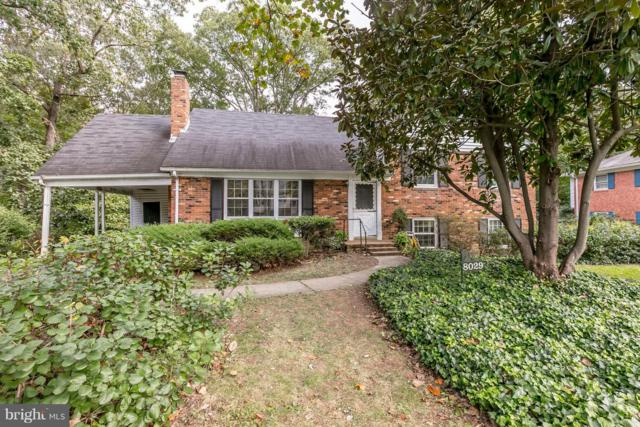 8029 Candlewood Drive, ALEXANDRIA, VA 22306 (#1009963864) :: Jennifer Mack Properties