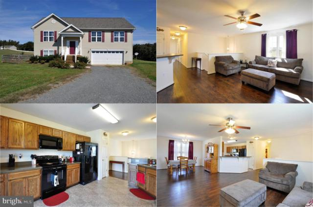 10143 Manchester Drive, CULPEPER, VA 22701 (#1009964172) :: Network Realty Group