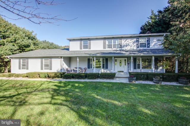 4900 Marianne Drive, MOUNT AIRY, MD 21771 (#1009964422) :: Great Falls Great Homes