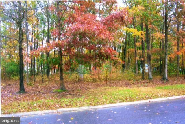 0 Acorn Circle Lot 43, POCOMOKE CITY, MD 21851 (#1009964686) :: CENTURY 21 Core Partners