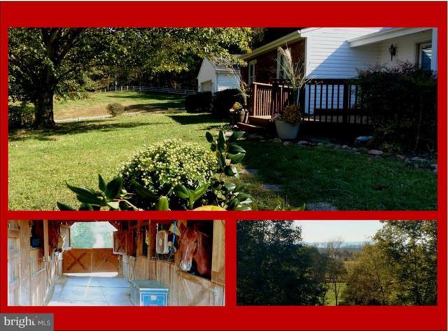 18282 Oak Shade Road, JEFFERSONTON, VA 22724 (#1009964692) :: RE/MAX Cornerstone Realty