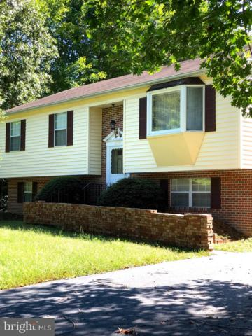 27335 Bosse Drive, MECHANICSVILLE, MD 20659 (#1009965170) :: Colgan Real Estate