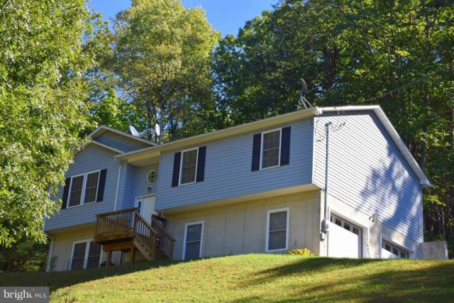 250 Spring Hollow Road, FRONT ROYAL, VA 22630 (#1009965288) :: ExecuHome Realty