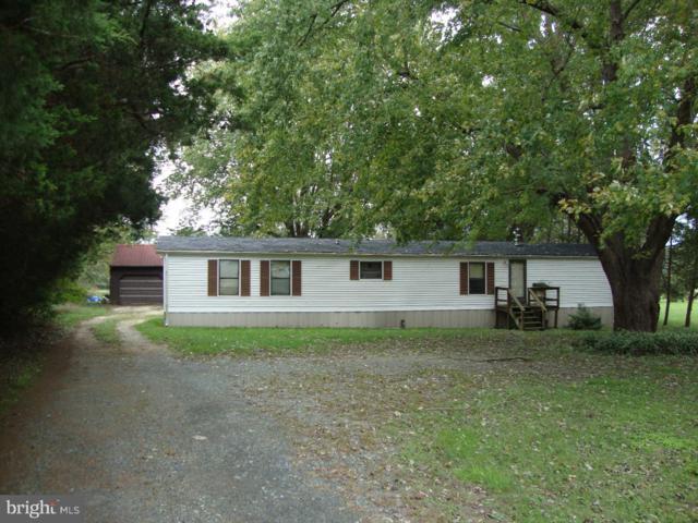 65 Briarbush Road, MAGNOLIA, DE 19962 (#1009965654) :: The Team Sordelet Realty Group