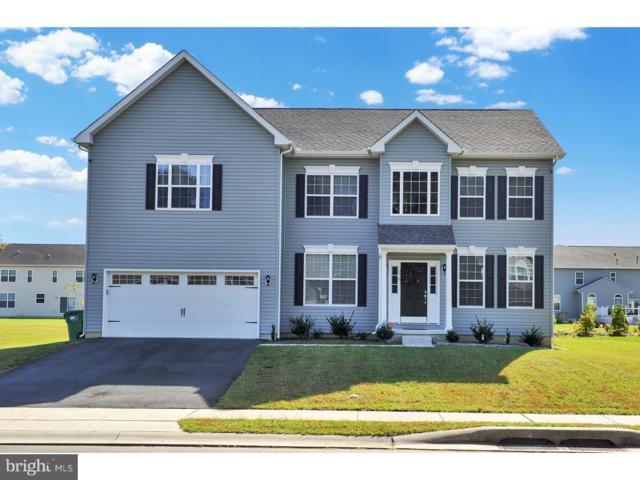 570 Southern View Drive, SMYRNA, DE 19977 (#1009970962) :: Colgan Real Estate