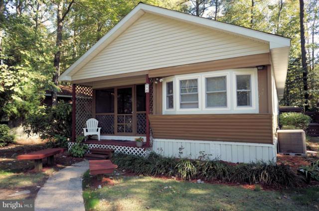 37150 Alabama Drive, FRANKFORD, DE 19945 (#1009971652) :: Brandon Brittingham's Team