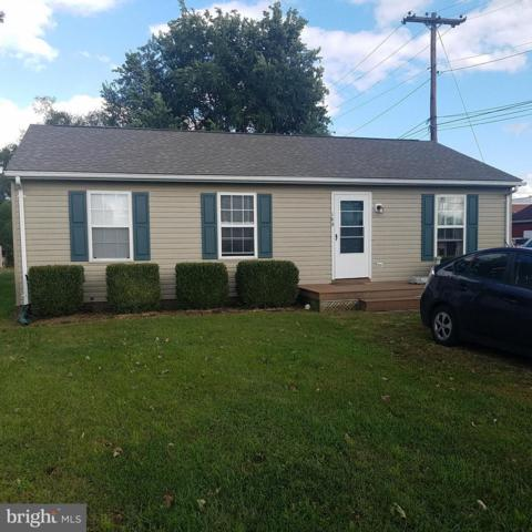 146 Warm Springs Avenue, MARTINSBURG, WV 25404 (#1009972998) :: Remax Preferred | Scott Kompa Group