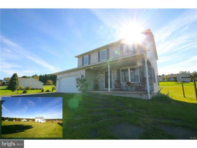 326 Moyers Station Road, SCHUYLKILL HAVEN, PA 17972 (#1009975482) :: The Craig Hartranft Team, Berkshire Hathaway Homesale Realty