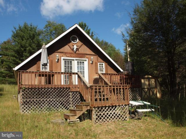 187 Deer Fern Drive Fork, SUGAR GROVE, WV 26815 (#1009976228) :: Great Falls Great Homes