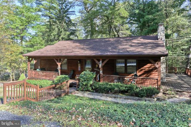 308 Old Mountain Road, MT GRETNA, PA 17064 (#1009976280) :: The Jim Powers Team