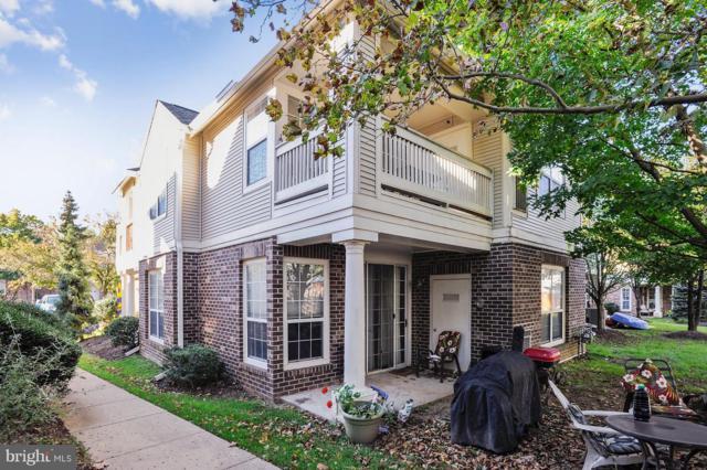 45060 Brae Terrace #103, ASHBURN, VA 20147 (#1009977294) :: Cristina Dougherty & Associates