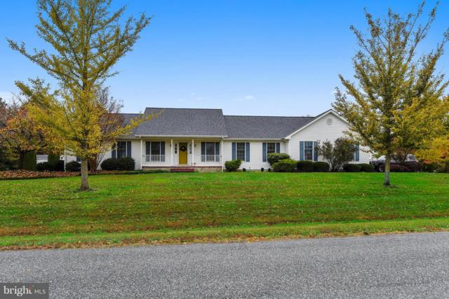 816 S Meadowview Drive, CHESTERTOWN, MD 21620 (#1009979876) :: Coldwell Banker Chesapeake Real Estate Company