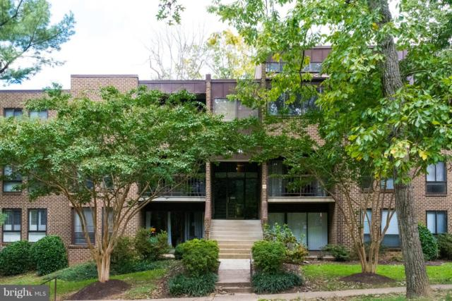 11248 Chestnut Grove Square #27, RESTON, VA 20190 (#1009980146) :: Cristina Dougherty & Associates