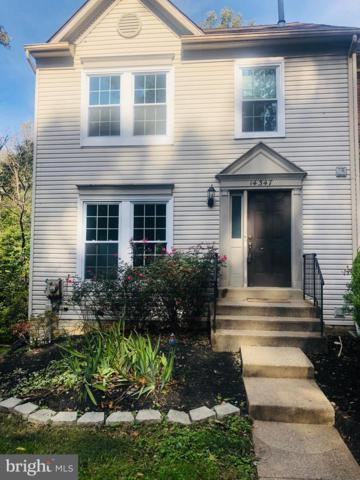 14347 Long Channel Drive, GERMANTOWN, MD 20874 (#1009980606) :: Labrador Real Estate Team