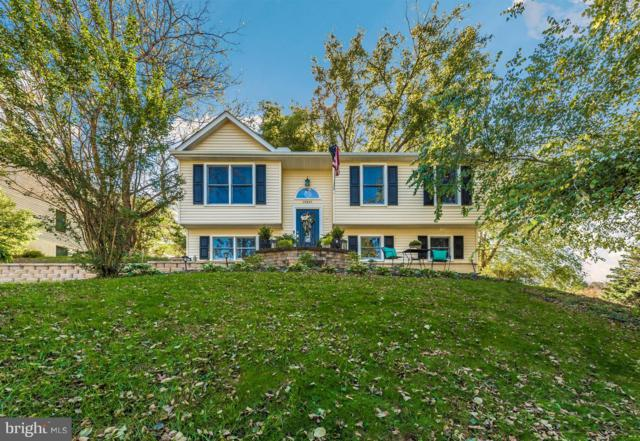 10801 N Glade Court, NEW MARKET, MD 21774 (#1009981212) :: Great Falls Great Homes