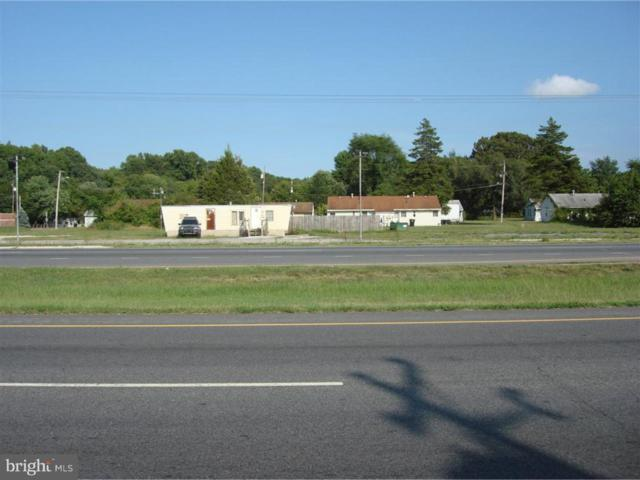 4009 S Dupont Highway, DOVER, DE 19901 (#1009981258) :: CoastLine Realty