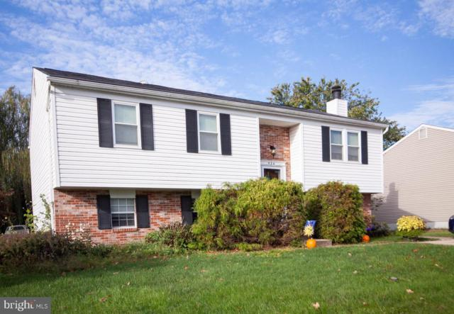 534 Holly Hunt Road, BALTIMORE, MD 21220 (#1009983980) :: Great Falls Great Homes
