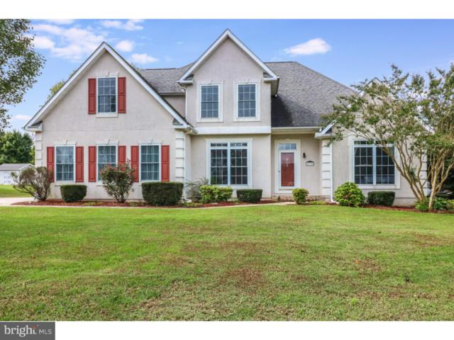 218 Apple Blossom Drive, CAMDEN WYOMING, DE 19934 (#1009984334) :: Colgan Real Estate