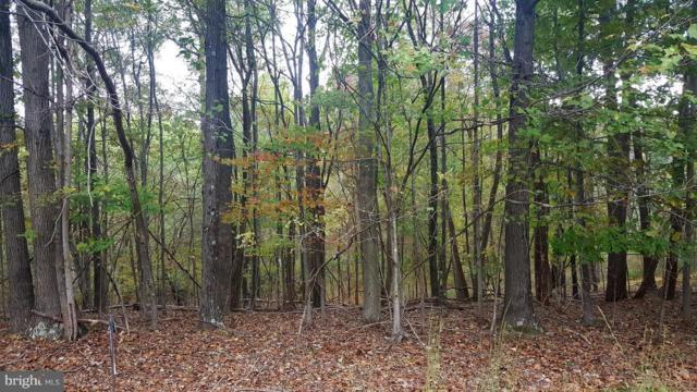 421 Otter Creek Drive, GERRARDSTOWN, WV 25420 (#1009986464) :: Eng Garcia Grant & Co.