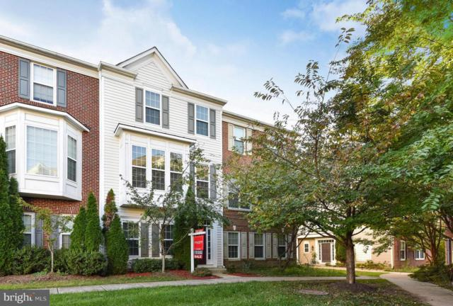 5030 Cool Fountain Lane, CENTREVILLE, VA 20120 (#1009986494) :: The Greg Wells Team