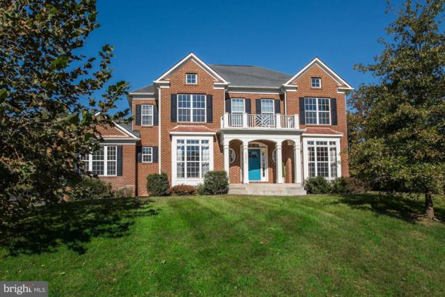 42298 Hiddenwood Lane, ALDIE, VA 20105 (#1009986956) :: Great Falls Great Homes