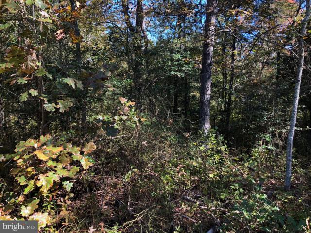 Lot 1 Laws Road, SNOW HILL, MD 21863 (#1009987066) :: The Allison Stine Team