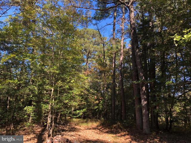 Lot 2 Laws Road, SNOW HILL, MD 21863 (#1009987212) :: The Allison Stine Team