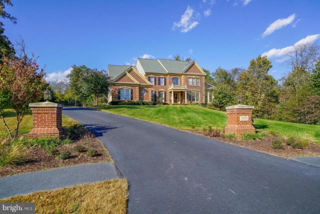 27563 Equine Court, CHANTILLY, VA 20152 (#1009993222) :: Remax Preferred | Scott Kompa Group
