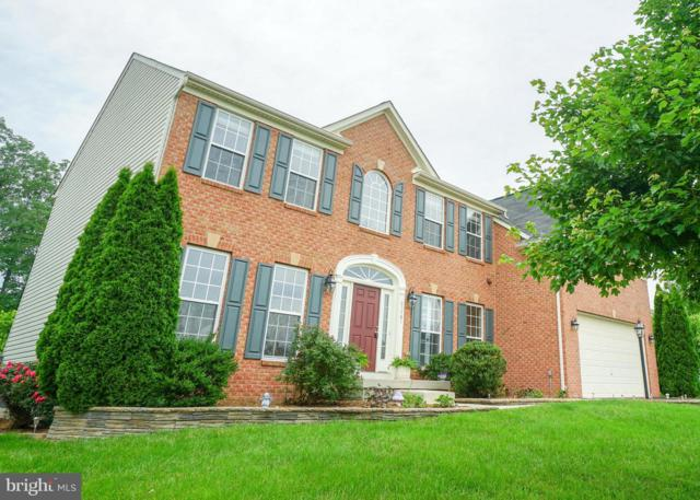 25461 Tomey Court, ALDIE, VA 20105 (#1009993530) :: RE/MAX Plus