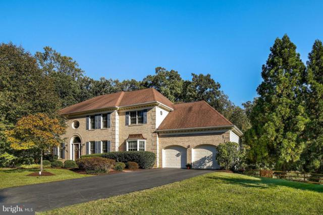 9100 Forest Shadow Way, FAIRFAX STATION, VA 22039 (#1009993892) :: The Gus Anthony Team