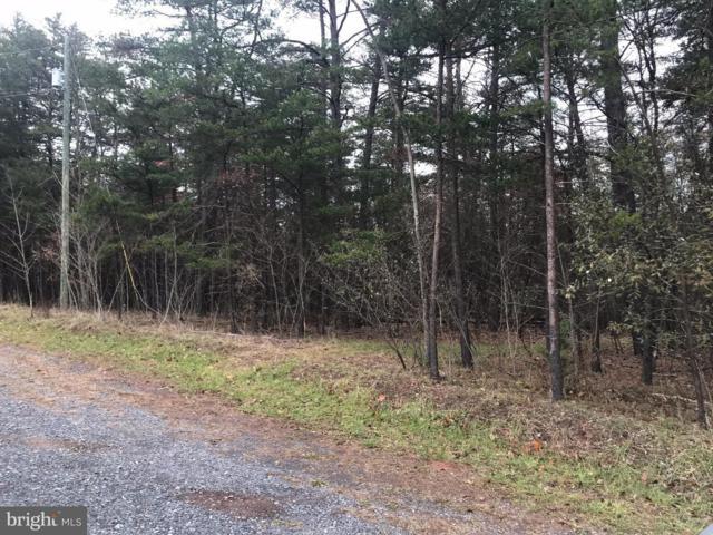 Pine Tree Lane, GORE, VA 22637 (#1009997560) :: AJ Team Realty